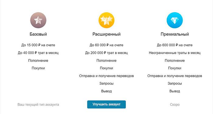 Виды аккаунтов VK Pay